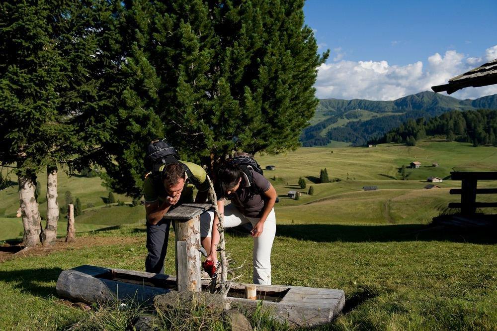 Giro dell'Alpe di Rodengo e Luson